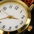 Stock Photo: Wrist watch close-up