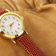 Stock Photo: Wrist watch
