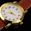 Wrist watch — Stockfoto #8759926