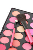 Blushes palette and applicators — Stock Photo