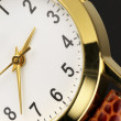 图库照片: Wrist watch close-up