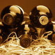 Wine bottles in straw — Stockfoto #9818761
