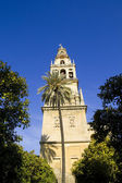 Belfry of the mosque of Cordoba - Spain — Stock Photo