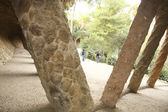 Washerwoman's Gate. Park Guell — Stock Photo