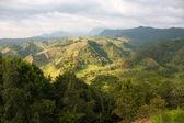 Las montañas de los andes de salento. — Foto de Stock