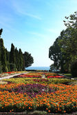 Botanic garden with flowers and sea — Stock Photo