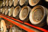 Row of wooden beer barrels — Stock Photo
