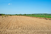 Countryside View of Furrowed Farmland — Stock Photo