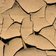 Cracked earth — Stock Photo #10230943