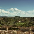 Panorama of Florence — Stock Photo #10231105