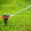 Closeup of lawn sprinkler with copyspace — Stock Photo #10233050