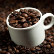 Cup with coffee beans — Stock Photo