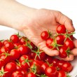 Hand demonstrating fresh cherry tomatoes — Stock Photo #10234379
