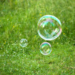 Soap bubbles against the grass background — Stock Photo