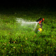 Lawn sprinkler spraying water over green grass at night — Stock Photo #10236430