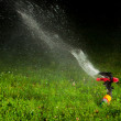 Lawn sprinkler spraying water over green grass at night — Stock Photo #10236435