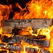 Burning logs — Stock Photo #10237227