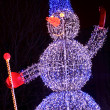 Illuminated snowman — Stock Photo #10237802
