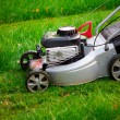 Lawn mower cutting the grass — Foto de Stock