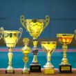 Group of trophies — Stock Photo