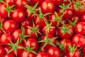Multitude of cherry tomatoes — Stock Photo