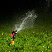 Lawn sprinkler spraying water over green grass at night — Stock Photo
