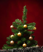 Christmas tree — Stock fotografie