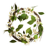 Leaves wreath isolated — Stock Photo