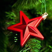 Christmas decoration - red star — Stock Photo