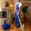 Professional cleaning — Stock Photo #10240912