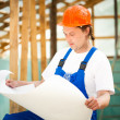 Builder looking at the construction plan - Stock Photo