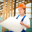 Professional builder - Stock Photo