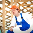Stock Photo: Professional builder