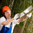 Gardener cutting a branch — Stock Photo #10242134