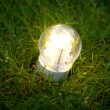 Led lamp on the grass — Stock Photo #10242841