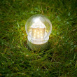 Led lamp on grass — Stock Photo #10242851