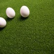 Group of eggs on the green lawn — Stock Photo #10243293
