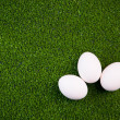 Group of eggs on the green lawn — Stock Photo #10243318