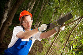 Gardener cutting a branch — Stock Photo