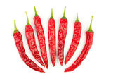 Chili peppers, isolated on white — Stock Photo