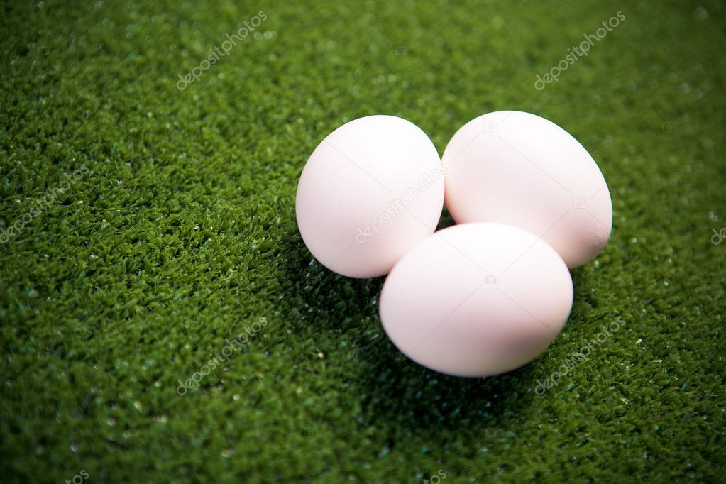 Group of eggs on the green lawn — Stock Photo #8876943