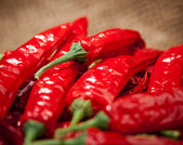 Multitude of red chili peppers — Stock Photo