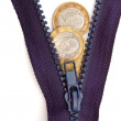 Royalty-Free Stock Photo: Euros and zipper