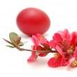 Easter eggs and pink blossom - Foto Stock