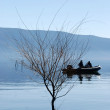 Willow on Lake Prespa in Macedonia — Stock Photo