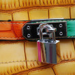 Padlock on bag — Stock Photo