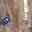 Stock Photo: Door number 19