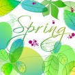 Beautiful spring leaves — Imagen vectorial