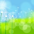 Beautiful green spring meadow — Stock Vector #10252831