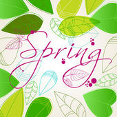 Beautiful spring leaves — Stock Vector